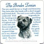 Border Terrier Drinks Coaster Hunting gift Idea